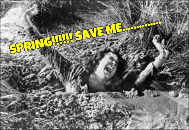 BeFunky_quicksand-sinking.jpg