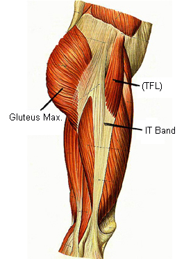 it bands adn glutes - Copy